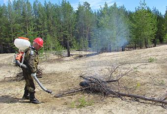 Учения по пожарам