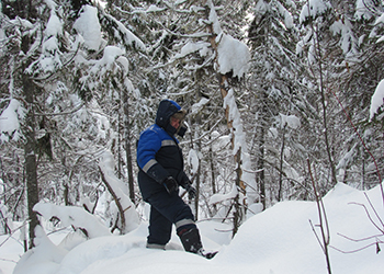 завершены зимние маршрутные учеты